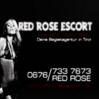 Red Rose Escort Völs Logo